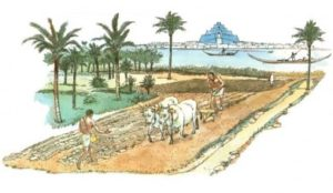 ancient-mesopotamian-agriculture-1